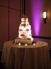 San Diego Wedding Cake Spotlighting & Uplights