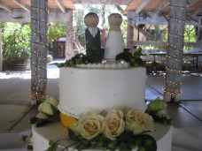Berardo Winery Wedding Cake Topper