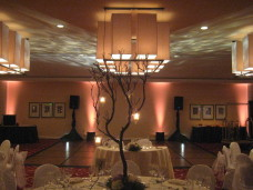 Estancia La Jolla Wedding DJ 1/14/12